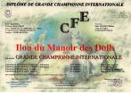 Grand Championnat Internationale