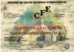 Grand Championnat Internationnal
