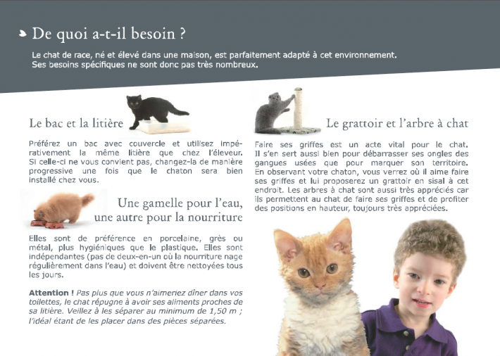 livret-chaton-3.png